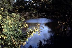 1982-11_006-opt
